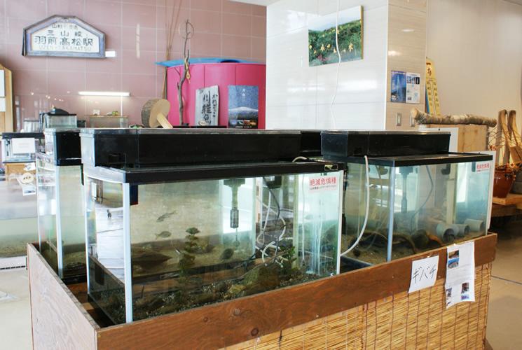月山湖水の文化館