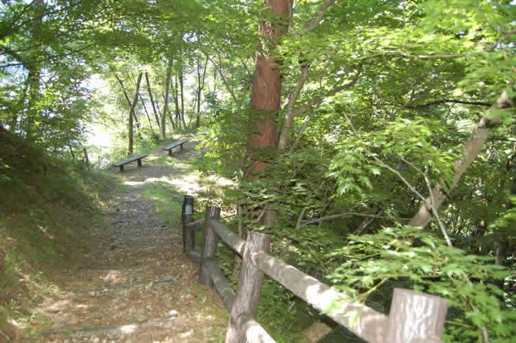 楯山公園(日本一公園)